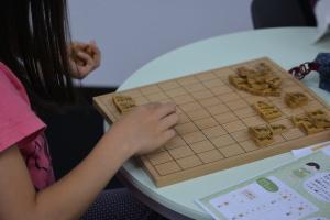 将棋の駒、種類わけ