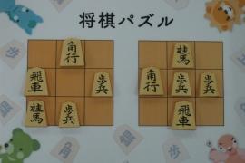 【初級】2019/2/12の将棋パズル