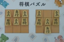 【初級】2019/2/22の将棋パズル