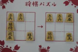【初級】2021/1/31の将棋パズル