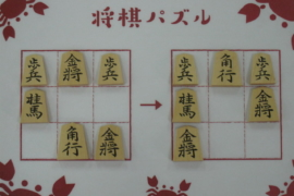 【初級】2021/5/17の将棋パズル